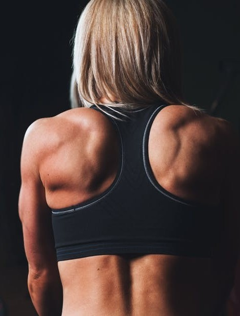 Back Exercises Lower Back Pain