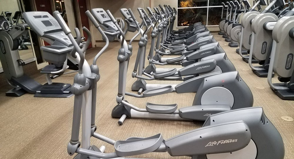 Row of ellipticals showing the best elliptcals 2018